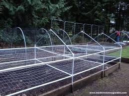 Pvc Pipe Trellis 16 Best Garden Pvc Pipe Images On Pinterest Pvc Pipes Pvc