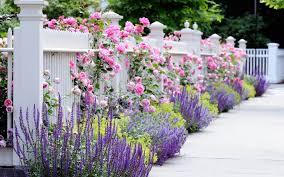 flower garden wallpaper garden design u2013 best wallpaper download