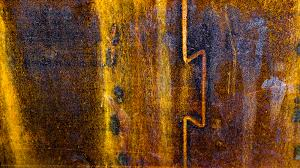 free images tree wood texture leaf trunk wall steel rust