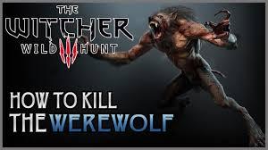 wild hunt witcher 3 werewolf the witcher 3 wild hunt how to easily kill a werewolf the witcher
