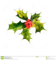 christmas holly watercolor background royalty free stock