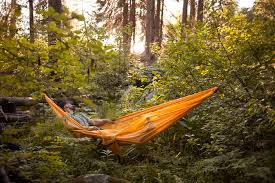 the treeo a 3 in 1 utility hammock that does it all by taylor