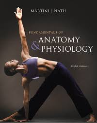 Human Anatomy And Physiology By Elaine Marieb Pdf Martini Anatomy And Physiology 9th Edition Pdf At Best Way To