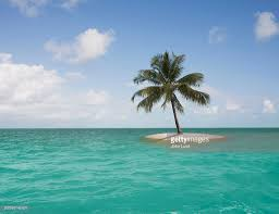island stock photos and pictures getty images