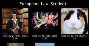 Meme Law - eu law analysis studying eu law a law student s guide updated oct