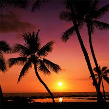 Palm Beach Tan Weatherford Tx Home Page