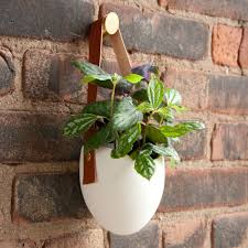 light ladder hanging planter nifty objects pinterest