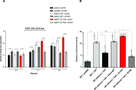 Yap Flag Regulation Of Localization And Function Of The Transcriptional Co