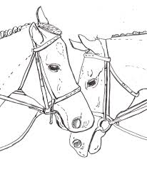 realistic horse head coloring pages