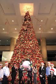 home decorators christmas trees indoor christmas trees christmas lights decoration