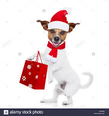 mall santa claus stock photos u0026 mall santa claus stock images alamy