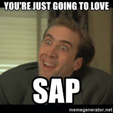 Sap Memes - you re just going to love sap nick cage meme generator