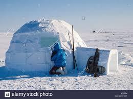 alaska a traditional inupiat eskimo igloo four miles south of