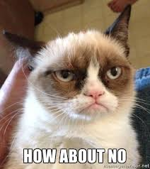 Grumpy Cat No Meme - grumpy cat no free large images