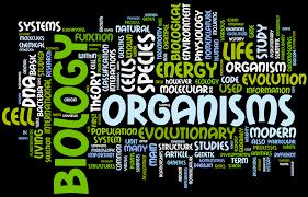 biozone u0027s ap biology 1 model answers ap biology pinterest