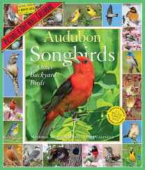 amazon com audubon songbirds and other backyard birds picture a