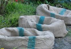 how to plant edibles in burlap sacks home grown