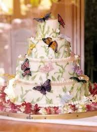 24 Best Butterfly Cake Images On Pinterest Butterfly Cakes