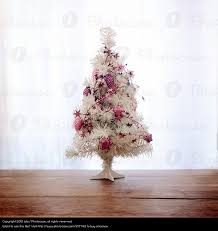 small pink christmas tree plant christmas advent a royalty free stock photo from photocase