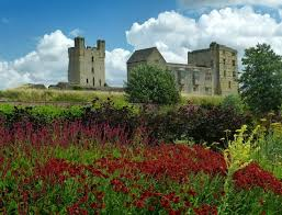 this picture shows echinacea yarrow and helmsley u0027s ancient castle