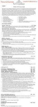air force resume example digital media resume examples free resume example and writing top resume writing service boston