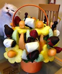 edible arragement cat photobomb edible arrangement dose of