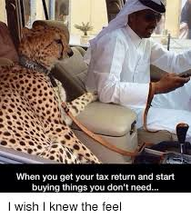 Buy All The Things Meme - when you get your tax return and start buying things you don t