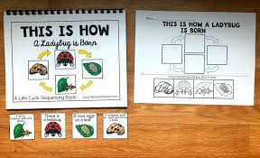ladybug life cycle sequencing 3 50 file folder games at file