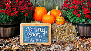 8 beautiful fall themed pregnancy announcements what to expect