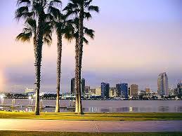 file san diego palms trees sidewalk piers jpg wikimedia commons