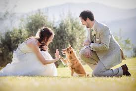 Wedding Photographer Venice Wedding Photographers