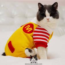 Yorkie Costumes Halloween Aliexpress Buy Funny Halloween Pet Cat Dog Mcdonald Costume