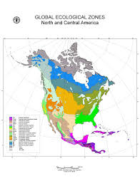 map usa central america global ecological zoning for the global forest resources