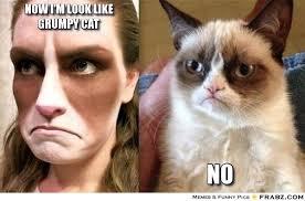 Grumpy Cat No Meme - grumpy cat memes generator image memes at relatably com