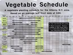 vegetable planting schedule hewitts garden centers