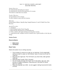 Resume Basics by Professional Resume Basic Format Examples Of Quality Regarding 17