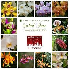 Botanical Garden Orchid Show Botanical Gardens Orchid Show Dunneiv Org