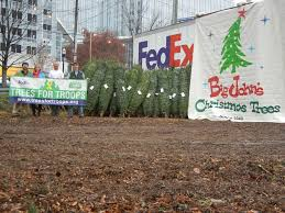 big john u0027s christmas trees photo gallery