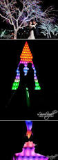 Zoo Lights Phx by The 25 Best Christmas At The Zoo Ideas On Pinterest Christmas