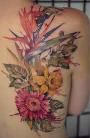 Flower And Bird Tattoo - best 25 bird of paradise tattoo ideas on pinterest bird of