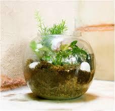 stylish houseplant display idea 4 marthas home decorating with