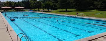 swimming pools swimming pools waipa district council