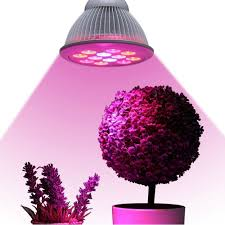 Pink Light Plant Growing Lamps Amazon Com