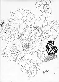 larkspur flower coloring page coloring page to view printable