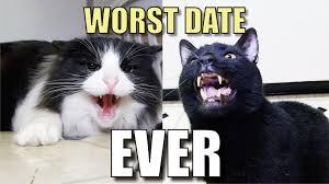 Talking Cat Meme - talking kitty cat 38 worst date ever youtube