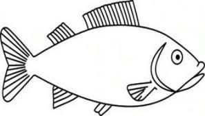 brown nemo fish clipart fish clipart 3142 clipartpen