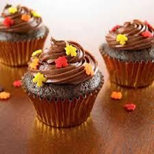 chocolate cinnamon mini cupcakes recipe land o lakes