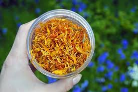 calendula u0026 honey funnel cake lovely greens garden living and making