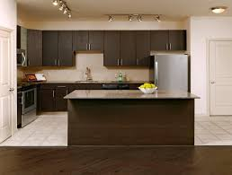 High End Kitchen Cabinet Manufacturers Apartment Kitchen Design Ideas Matching Cabinets U0026 Countertops