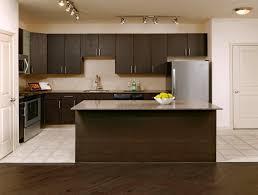 High End Kitchen Cabinet Manufacturers Apartment Kitchen Design Ideas Matching Cabinets U0026 Countertops